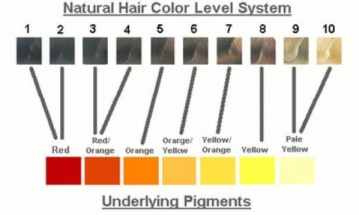 Understanding Hair Color Amp Why Its So Important Amp Exciting Too